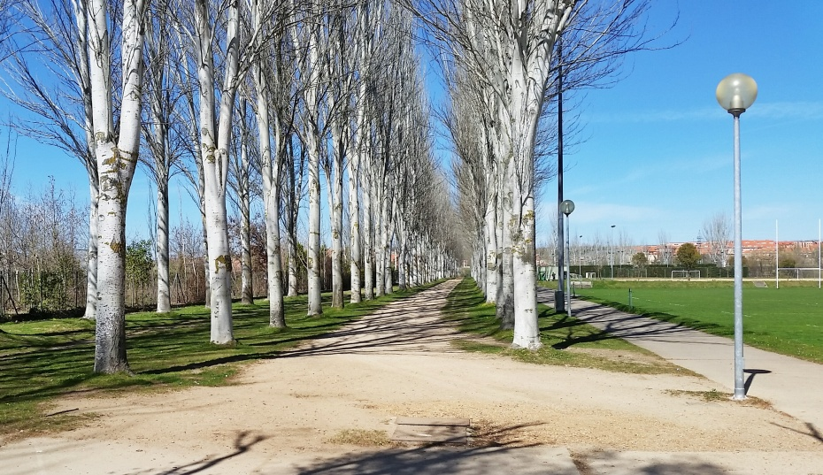 Running trail 2 - Salamanca, Spain - Dawson