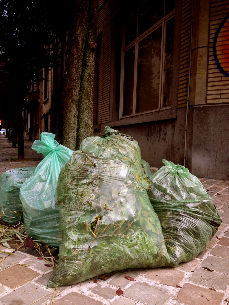 Another recycling option is to collect your garden waste and use this green bag.