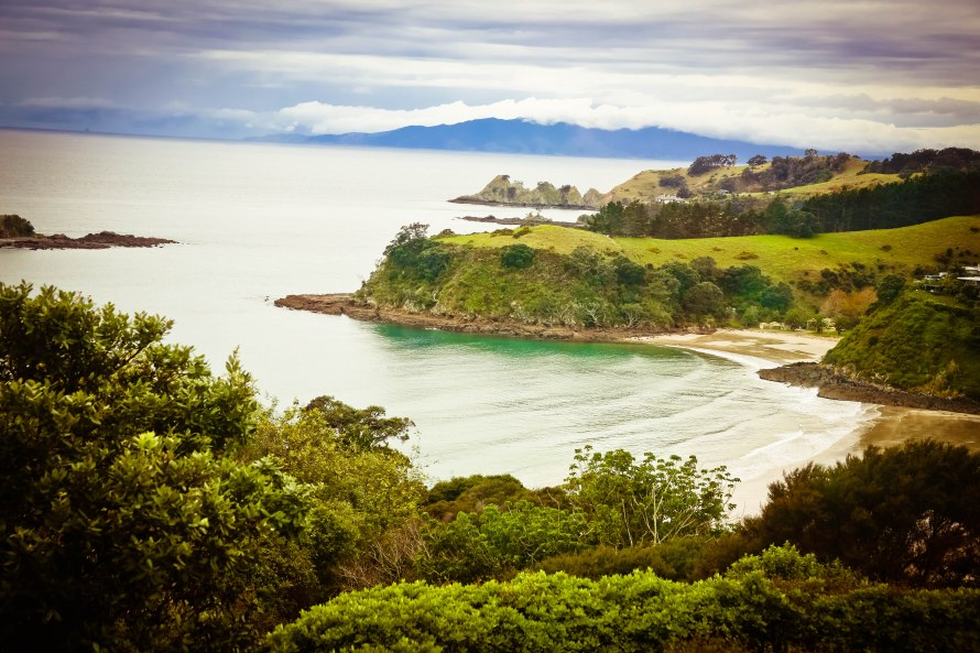 On the way to Stoneyridge Winery on Waiheke Island