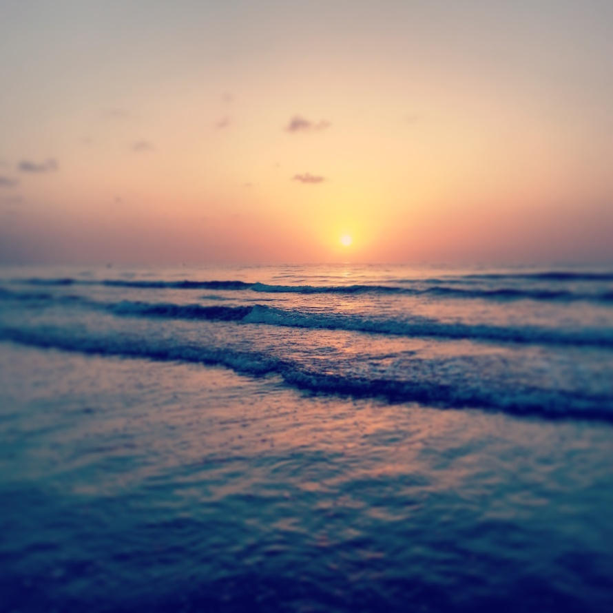 Sunrise on Malva-Rosa Beach, Valencia, Spain, Davis- Photo 6