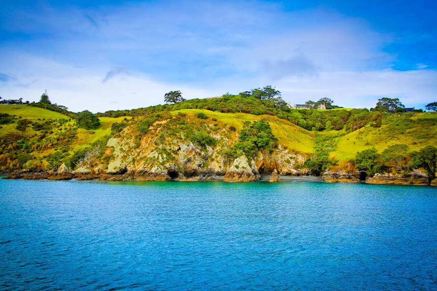 How lush is New Zealand? On the ferry ride over from Auckland to Waiheke Island.