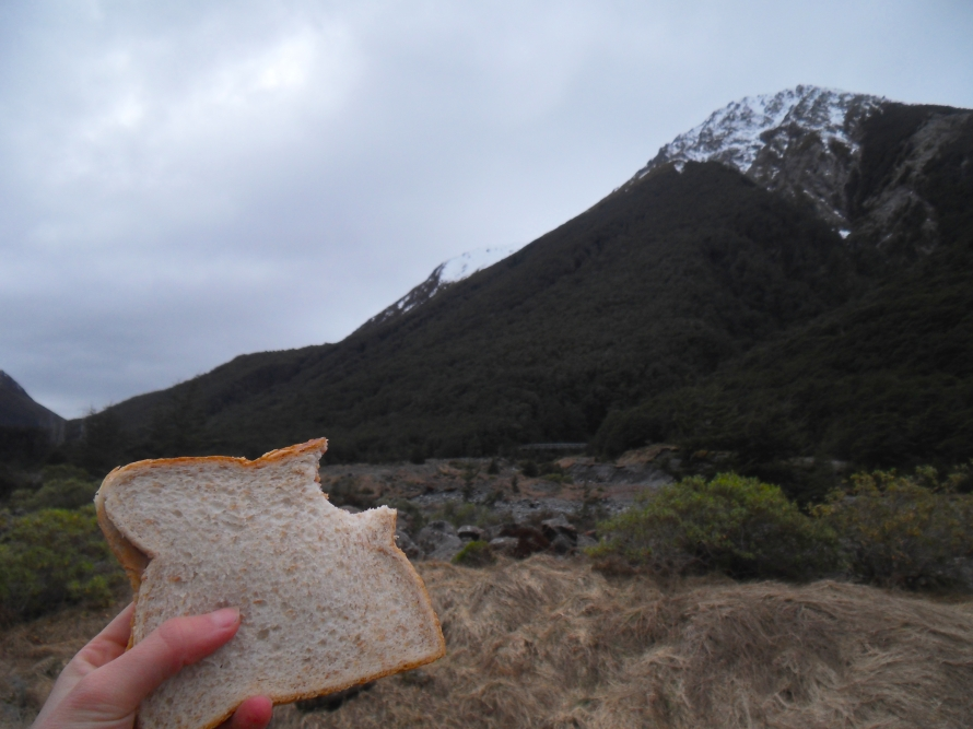 Arthur's Pass, New Zealand. See more on the ISA Student Blog: https://isastudentblog.wordpress.com/