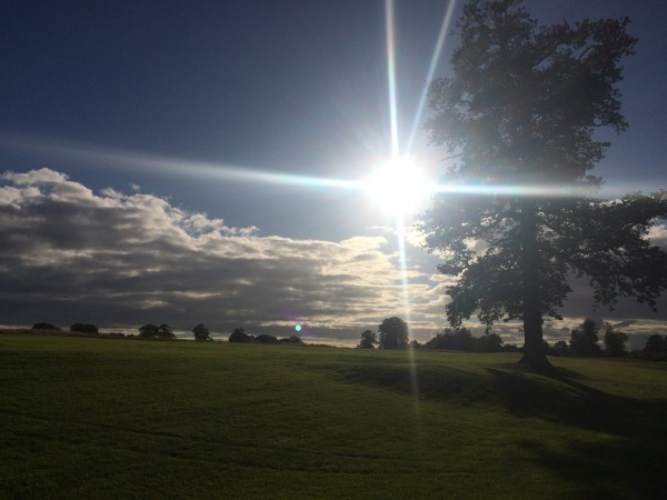 Golf Course, Maynooth, Ireland - Sakowski - Photo 4