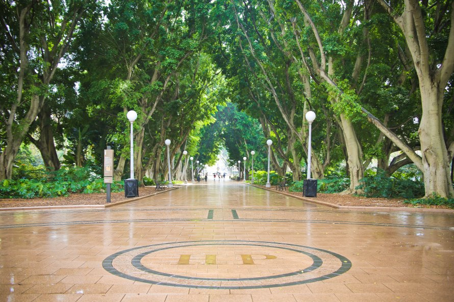 Hyde Park, Sydney, Australia, Renard - Photo 10