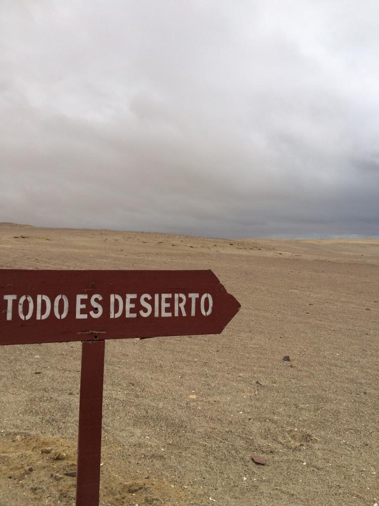 Ica, Peru, Schell, Photo 2