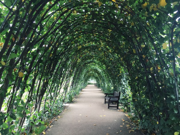 Kensington Park, London, UK, Dowd, Photo 11
