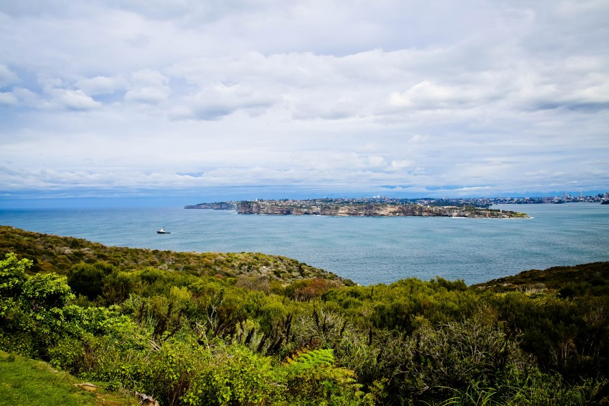 Northhead, Sydney, Australia, Renard - Photo 5
