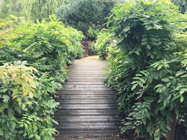 Regent Park, London, UK, Dowd, Photo 2