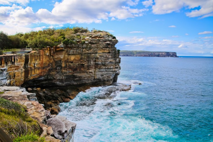The Gap, Sydney, Asutralia, Renard - Photo 8
