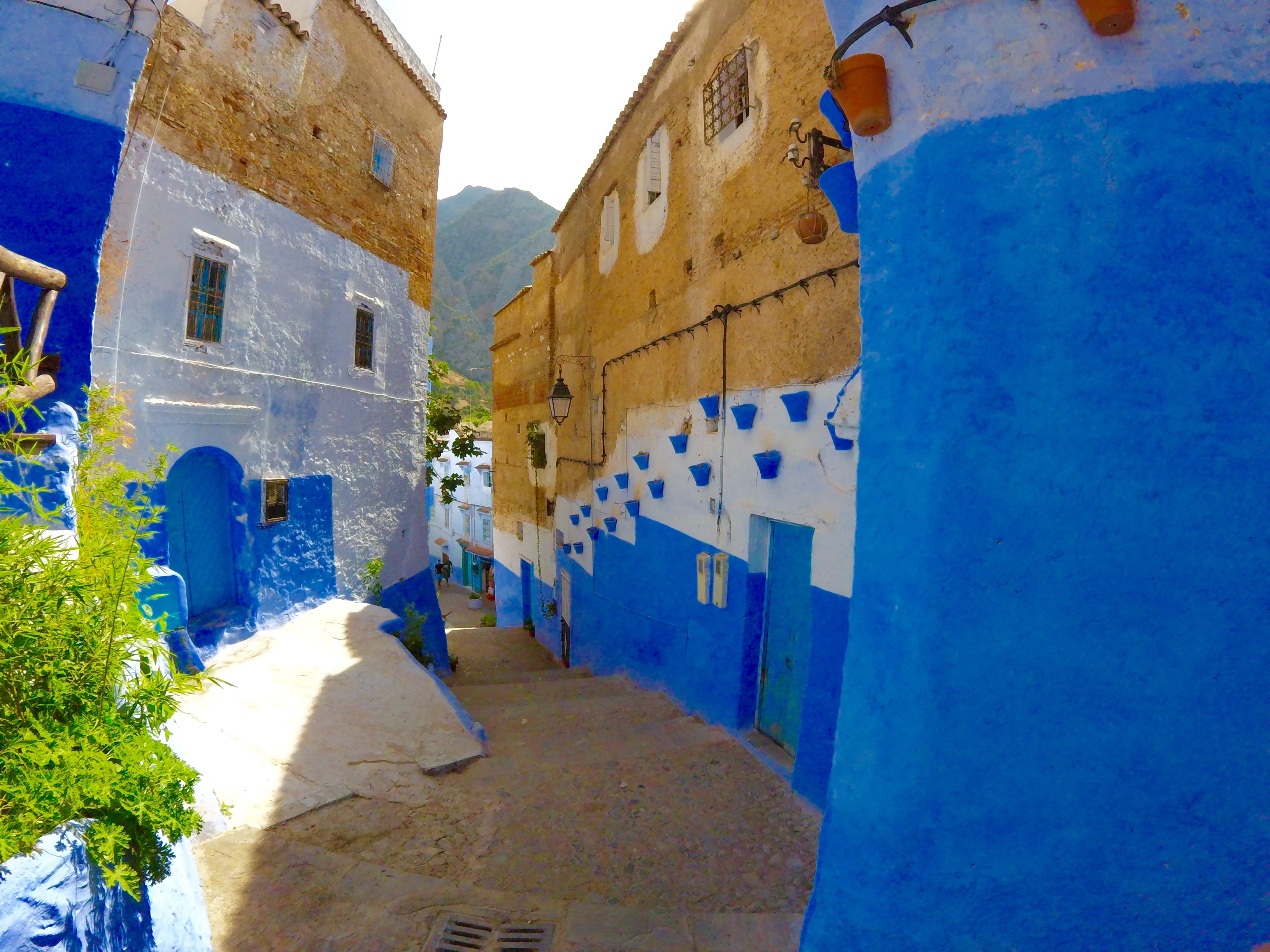 Image result for Chefchaouen: a beautiful city ready to be discovered
