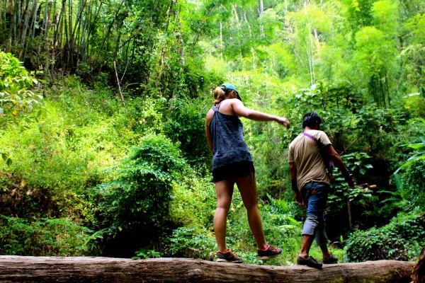 Jungle Trek, Chiang Mai, Thailand - Manning - Photo 2