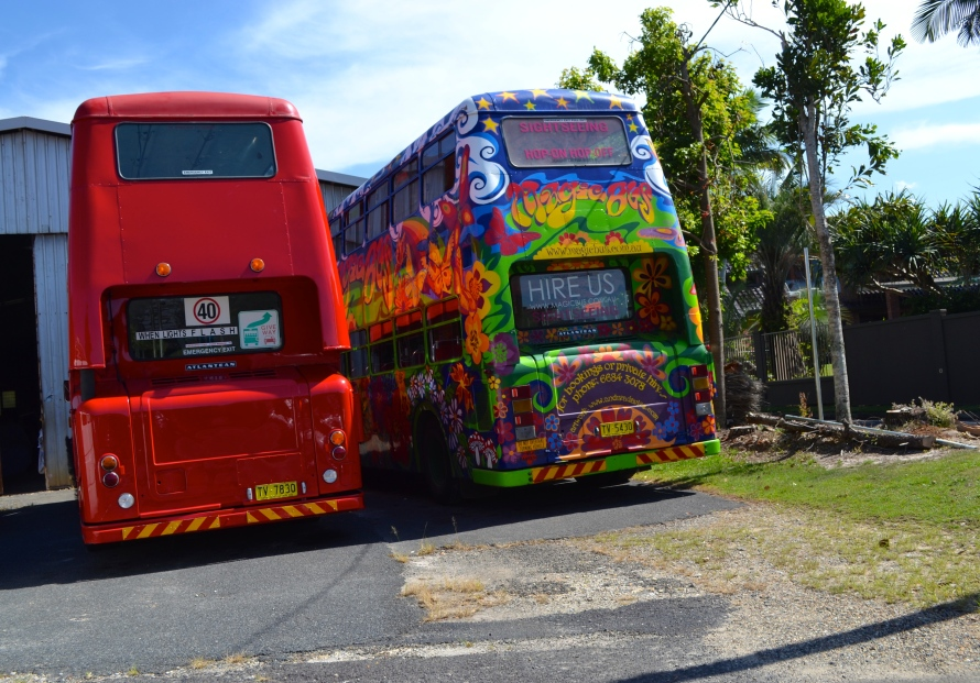 Buses, Byron Bay, Australia - Barker - Photo 3
