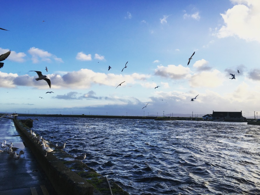 Some of my favorite spots in Galway are along the water.