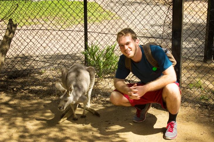 Kangaroos and Americans