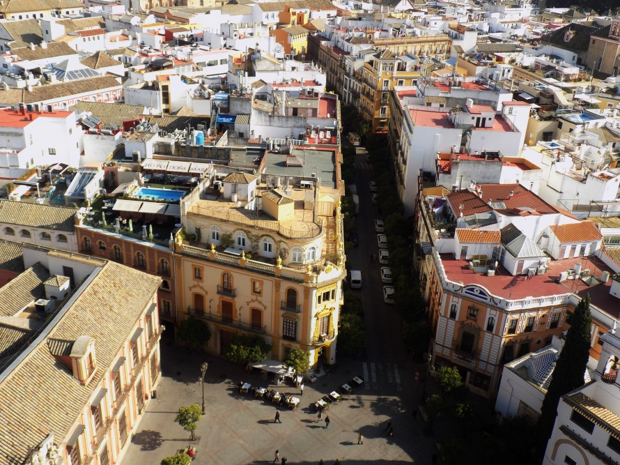 El Centro Ciudad- Amazing view from top of the Catedral de Sevilla!