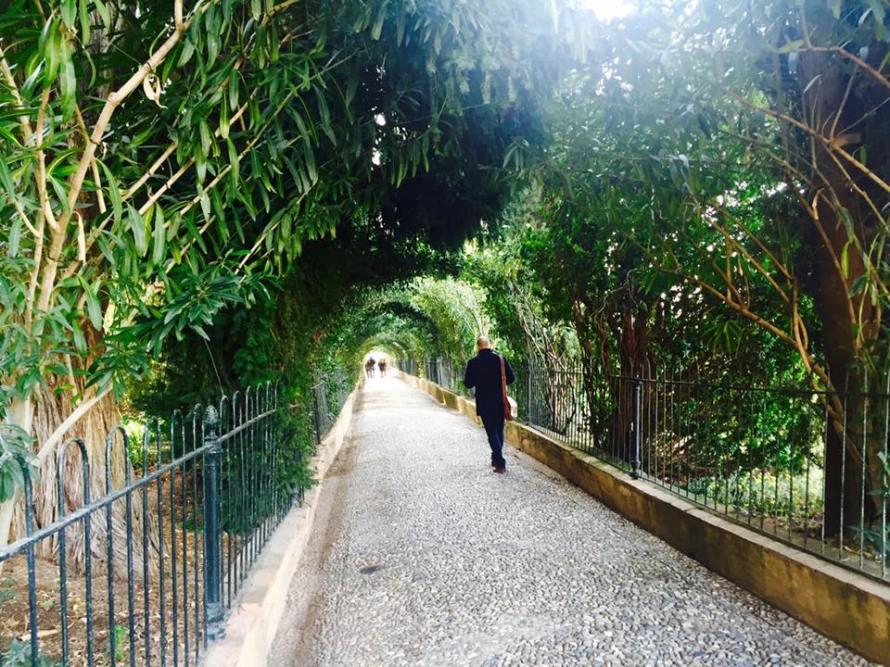 Jardin de Alhambra, Granada, Spain G+ç+¦ Rheu G+ç+¦ Photo 11