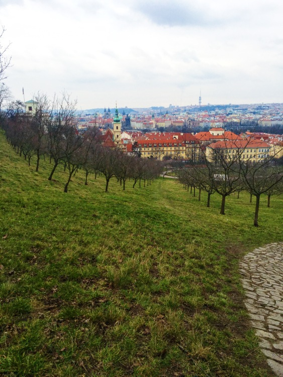 Petrin Hill is a great place to wander, not to mention the gorgeous views.