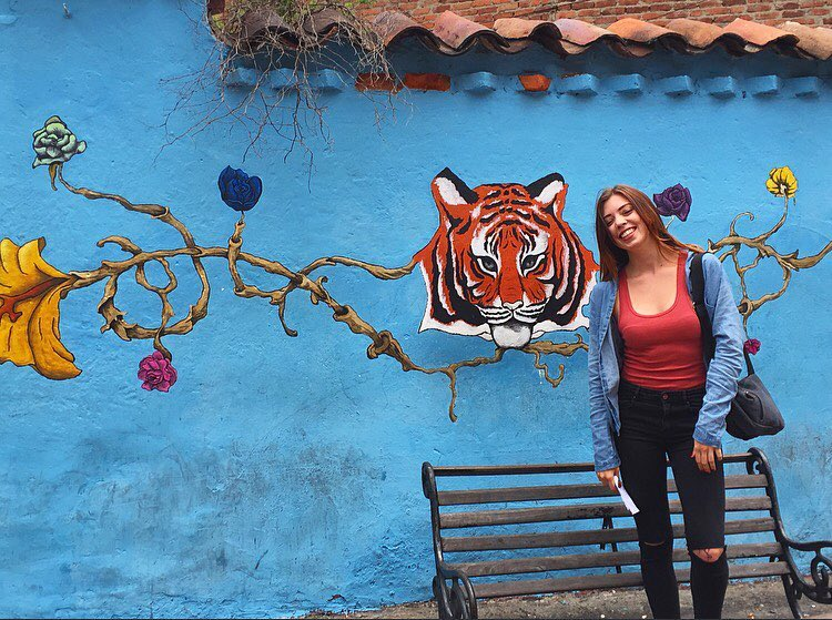 Taking time to appreciate the famous Bogota graffiti art. Such amazing work!