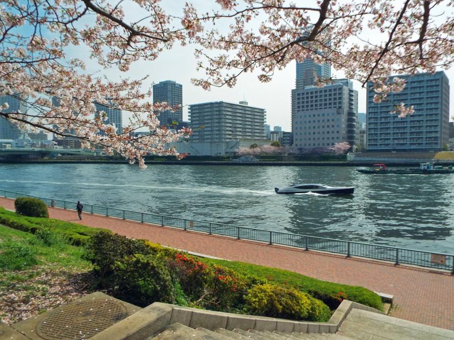 Sumida River, Tokyo, Japan, Ditkoff - Photo 7