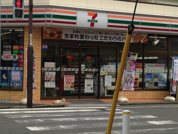 Kotakecho 711, Tokyo, Japan, Ditkoff - Photo 4