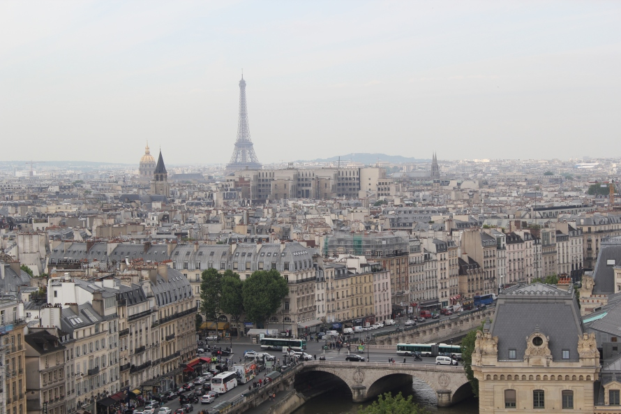 Notre Dame View, Paris, France - Tursky - Photo 1