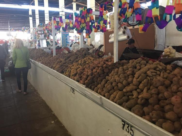 Just one part of the vast potato section in the famous San Pedro market