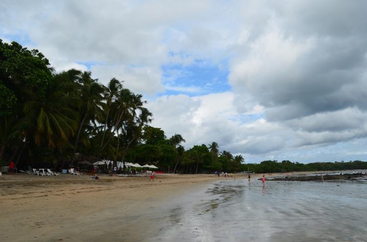 Beach, Tamarindo, Costa Rica, Joyce Photo 2