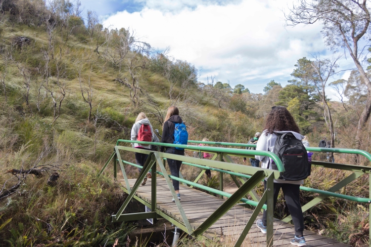 The beginning of the hike on the ISA excursion to the Blue Mountains.