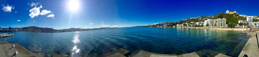 OrientalBay,Wellington,NewZealand-Pahl-Photo1