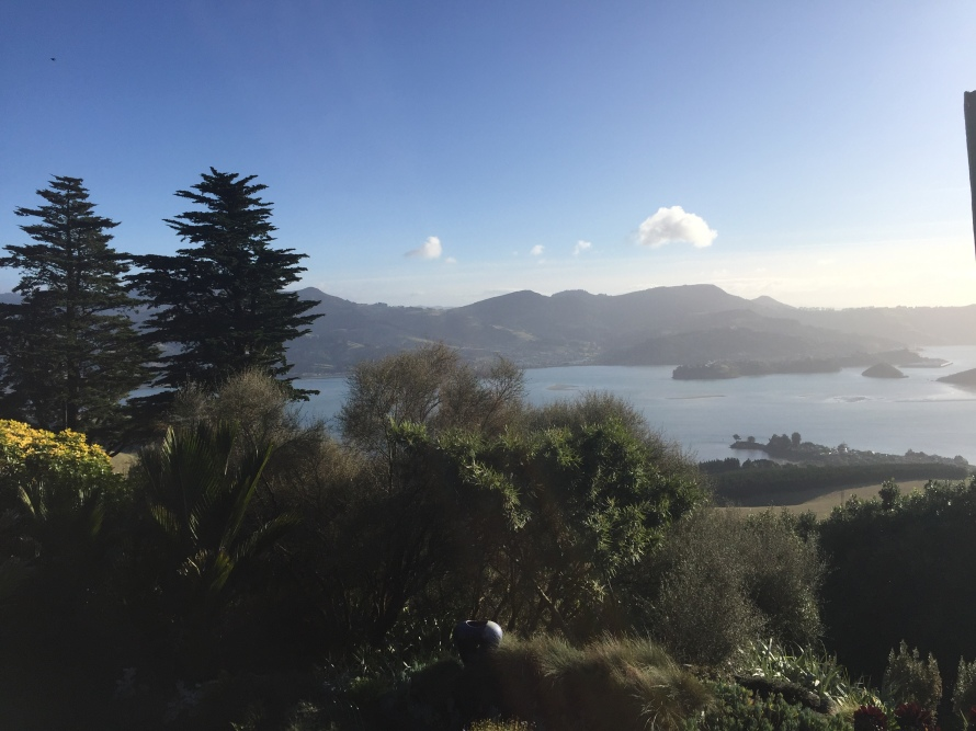 Otago Peninsula From Lanarch Castle- Dunedin, New Zealand -Grant, Photo 9