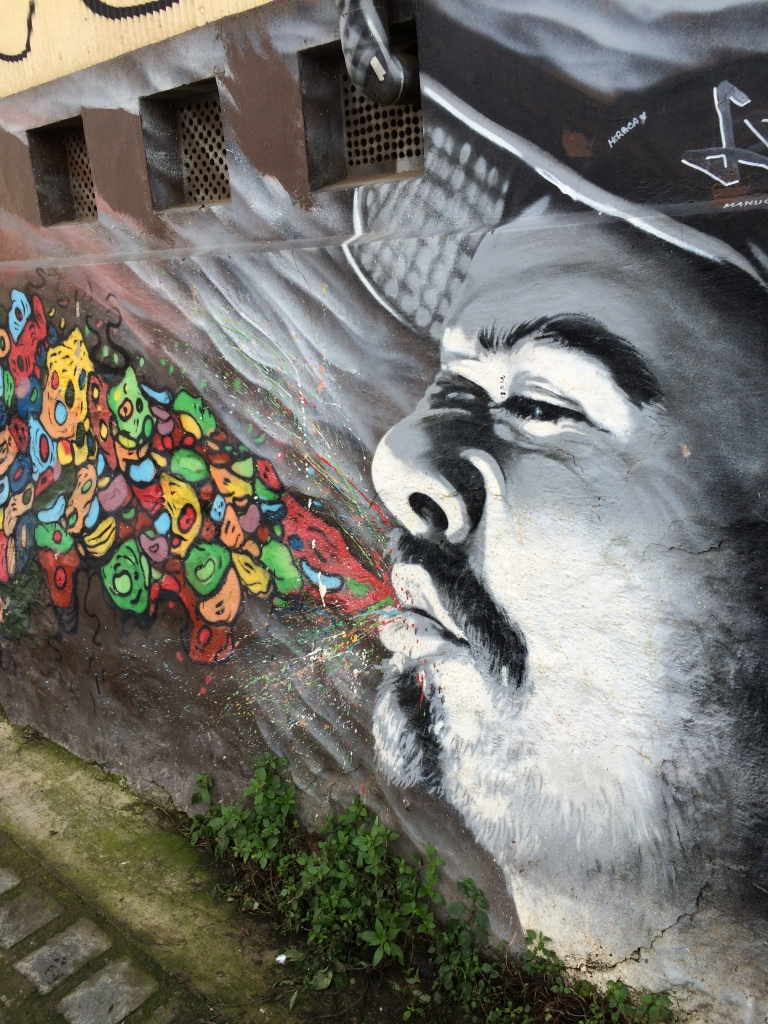 wall-mural-valparaiso-chile-robison-photo-2