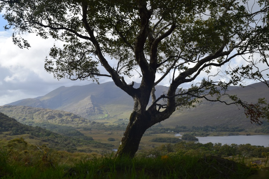 Molls Gap, Ring of Kerry.