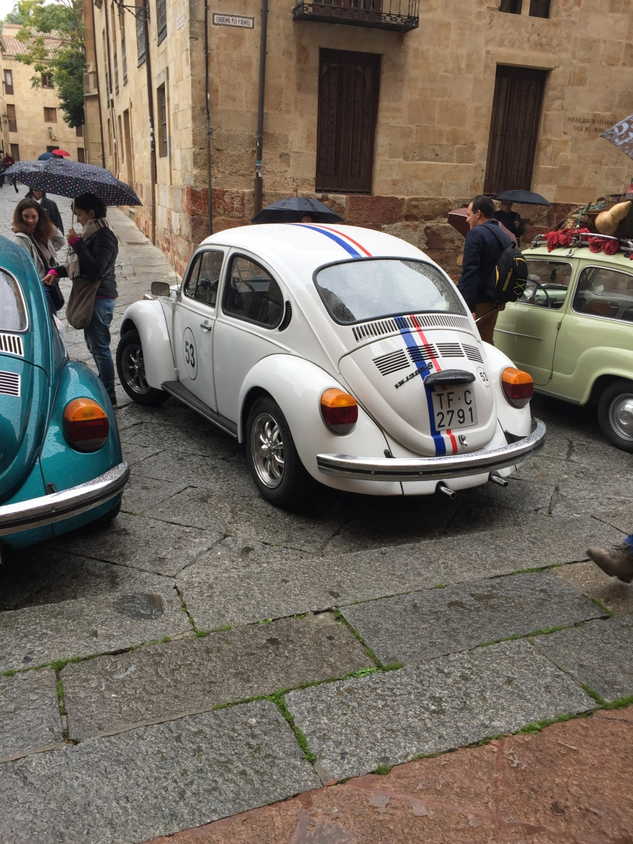 herbie_salamanca_spain_rorymoore_photo7