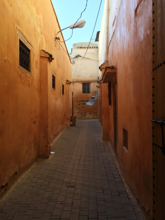 American cartoon character Donald Duck peers through an alley in the Meknes Medina.