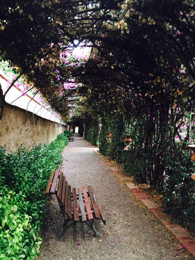 """The famous """"Love Tunnel"""" at the back of the garden"""