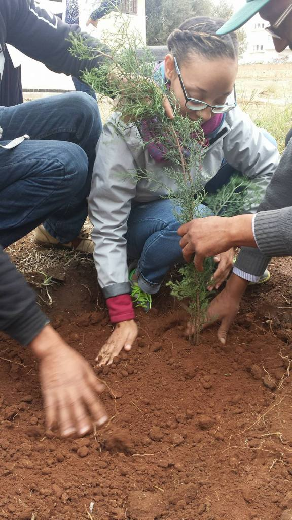 planting-_meknes_morocco_michaellapatterson_photop