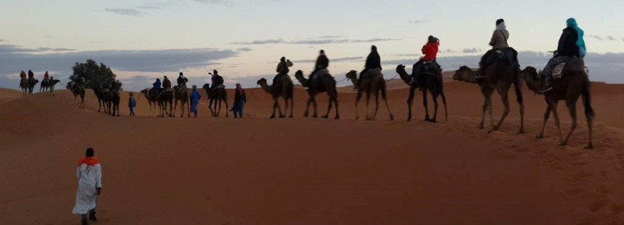 ride-a-camel-ride_morzuga_fes_michaellapatterson_photor