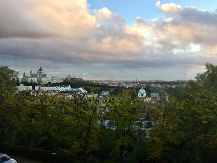 An overview of the city from the park, with the royal palace peeking through in the corner