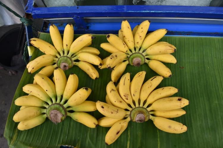kanchanaburi_bangkok_thailand_katiekehler_bananas