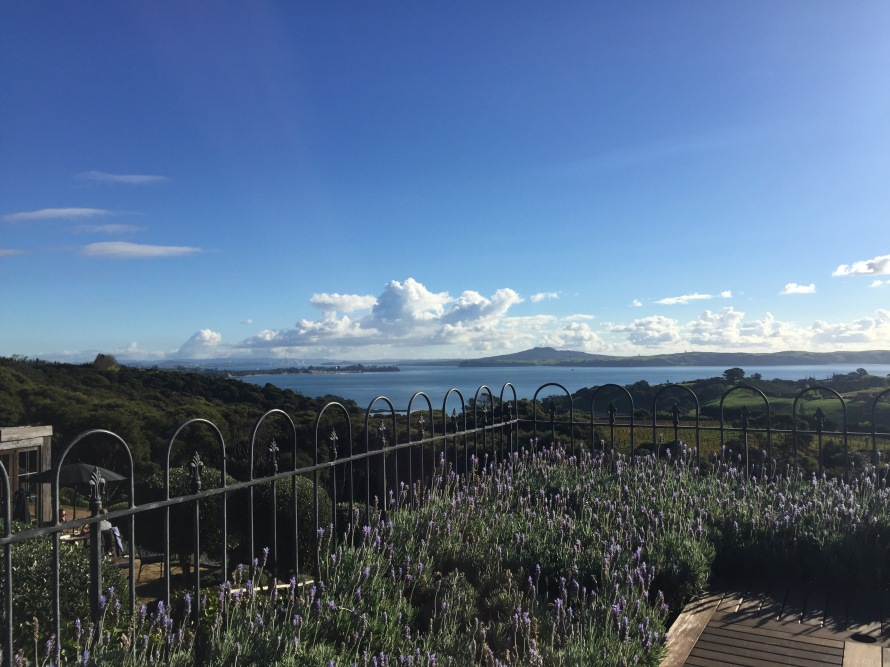 Mudbrick_WaihekeIsland_NZ_LynchAshley_Views1