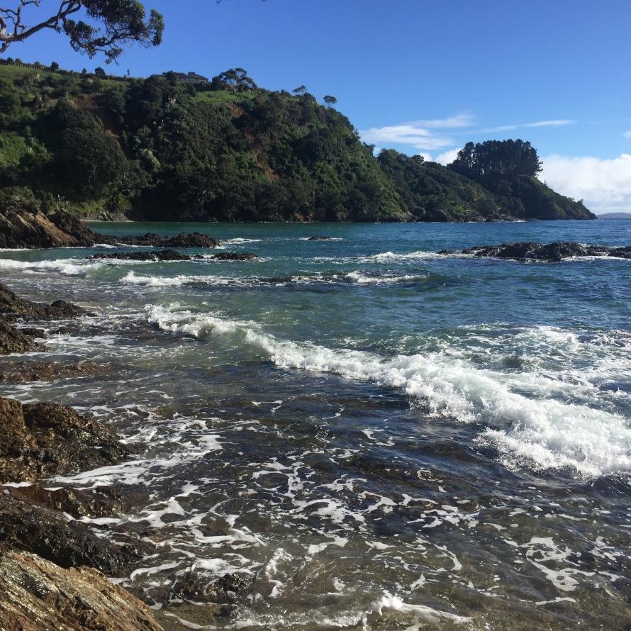 PalmBeach_WaihekeIsland_NZ_LynchAshley_Beach1